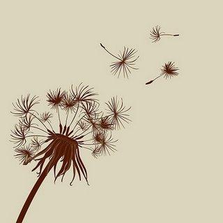 dandelion.jpg?w=500